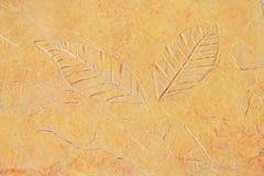 Découpage des feuilles dans le plancher de roche images stock