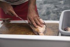 Découpage des filets de poissons Photographie stock