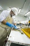 Découpage des filets industriel de poissons Photos libres de droits
