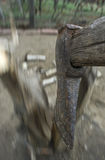 Découpage en bois images libres de droits