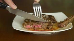Découpage en tranches du bifteck grillé d'un plat banque de vidéos
