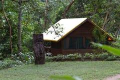 Découpage indigène sur le bois photos stock