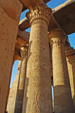 Découpages de fleur au temple de Karnak Image libre de droits