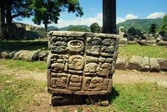 Découpages en pierre de Maya mystérieux dans des ruines copan, Honduras image libre de droits