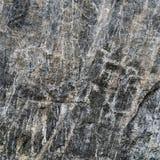 Découpages primitifs antiques de roche sur la pierre noire Photographie stock