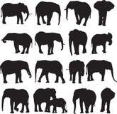 Découpe de silhouette d'éléphant africain Image stock