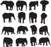 Découpe de silhouette d'éléphant africain et d'éléphant asiatique Photographie stock libre de droits