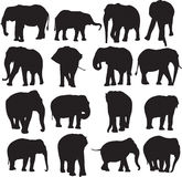 Découpe de silhouette d'éléphant africain et d'éléphant asiatique Photos stock