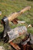 Découpeur en bois Image stock