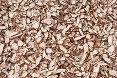 Découpez le manioc Photographie stock libre de droits