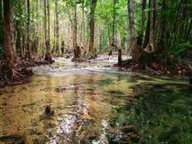 Découverte de la Thaïlande, Emerald Pool Image libre de droits