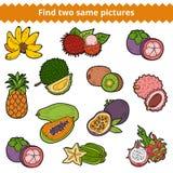 Découverte deux les mêmes photos Ensemble de vecteur de fruits Image libre de droits