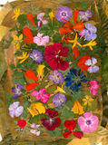 Dédouanement multicolore d'applique de Motley des fleurs pressées sèches photo stock