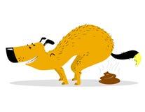 Défécation du chien Animal familier pooping de sourire mignon illustration libre de droits