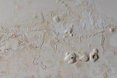 Défauts de peindre le mur dû à la pénétration d'humidité image libre de droits