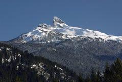 Défense noire en montagnes de côte Image stock