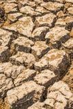 Déficit de l'eau de sol de ressort Photos libres de droits