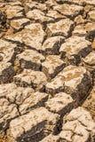 Déficit de l'eau de sol de ressort Photo libre de droits