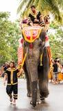 Défilé d'éléphant Images libres de droits