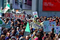 Défilé de jour de terre Photos libres de droits