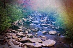 Défunt coucher du soleil de jour en forêt au-dessus d'un petit courant ou rivière avec les fusées légères colorées Image libre de droits