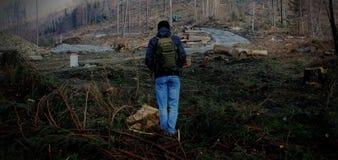 Dégagement de région boisée photographie stock libre de droits