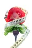 Dégagement de salade image stock