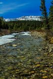 Dégel en retard de ressort, le comté de Clearwater, Alberta, Canada Image libre de droits