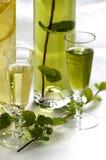Dégustation de la boisson alcoolisée de fines herbes Image libre de droits
