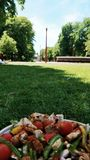 Déjeuner au parc image libre de droits