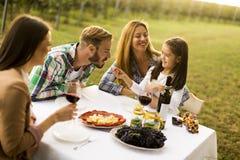 Déjeuner au vignoble Photos libres de droits