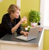 Déjeuner avec l'ordinateur portatif Images libres de droits
