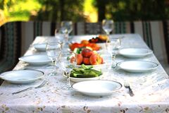 Déjeuner d'été dehors Image stock
