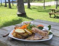 Déjeuner de BBQ extérieur Photos stock