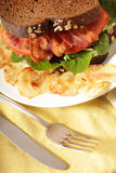 Déjeuner de BLT Photos libres de droits