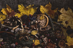 Délabrement d'automne photographie stock libre de droits