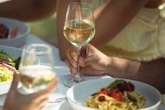 Démons ayant un verre de vin tout en ayant dans le restaurant Photos libres de droits