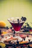 Dénommer en verre de vintage d'automne de chokeberry de teinture Photos stock