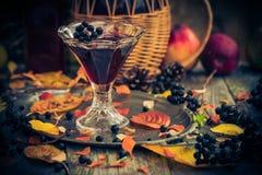 Dénommer en verre de vintage d'automne de chokeberry de teinture Photographie stock libre de droits
