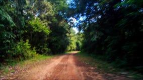 Déplacement le long de l'ombre Sunny Dirt Road après pluie dans la forêt tropicale banque de vidéos