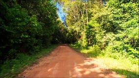 Déplacement le long de l'ombre Sunny Dirt Road après pluie dans la forêt tropicale clips vidéos