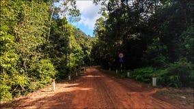 Déplacement le long de l'ombre Sunny Ground Road dans la forêt tropicale clips vidéos