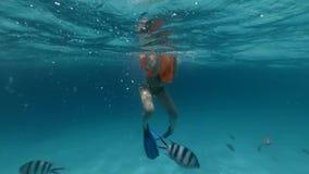 Dérives adultes de fille dans l'océan près du récif coralien banque de vidéos
