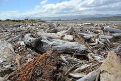 Dérivez le bois empilé sur la plage de Karamea, Nouvelle-Zélande Image libre de droits