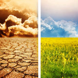 Désastre écologique Photo libre de droits