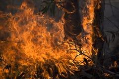 Désastre avec l'incendie Photos stock