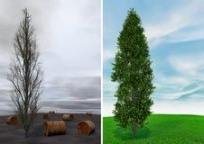 Désastre d'écologie Image libre de droits
