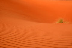 Désert Arabe Photo stock