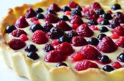 Désert au goût âpre de fruit avec la framboise, la mûre et la myrtille Photographie stock libre de droits