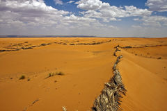 Désert au Maroc Photo stock